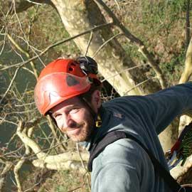 élagage abattage taille grimpeur arboriste